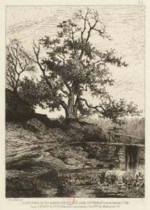 Tree Near Where Chouan was Said to Have Been Shot in the Chest, Courtesy of Bibliothèque nationale de France