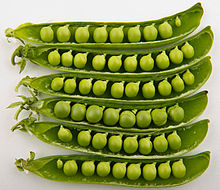 Death by Peas