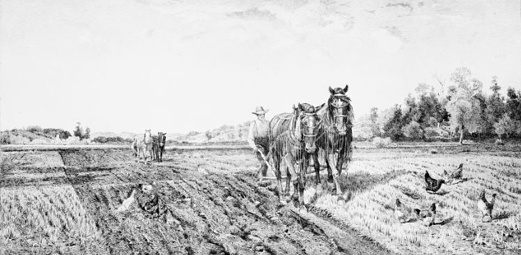 Jobs for Horses - plowing a field