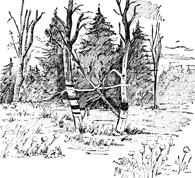 Hiram Sawtelle - site where body discovered