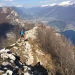 Trail Gard 017