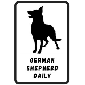 German Shepherd Info