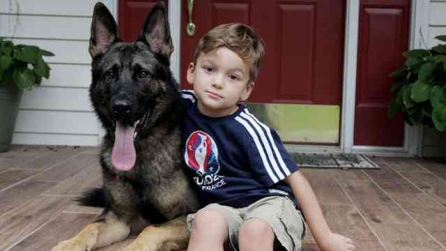 Are German shepherds good with kids? German shepherds will love and protect your kids by instinct.
