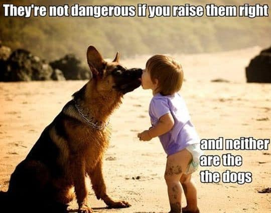 German Shepherds are great with kids