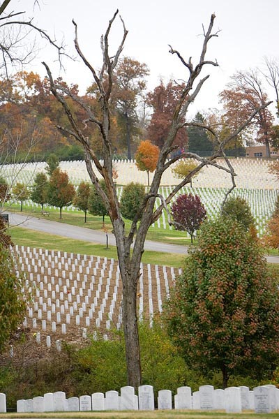 Fall colors at Jefferson Barracks © 2009 Max Gersh