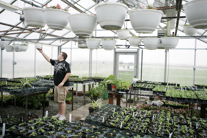 Aaron Cummings, senior at Tri High School, hangs plants in the Tri greenhouse Wednesday afternoon. (C-T photo Max Gersh)