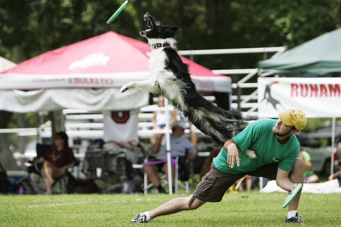 Matt Bilderback of Columbus, Ohio competes in the expert freestyle event with his dog, Buddy, at the Skyhoundz North Central Regional championship in Osborne Park. (C-T photo Max Gersh) ©2010