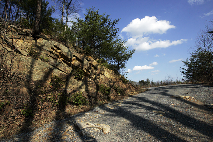 Shadows on a road in the Smokey Mountains. ©2011 Max Gersh