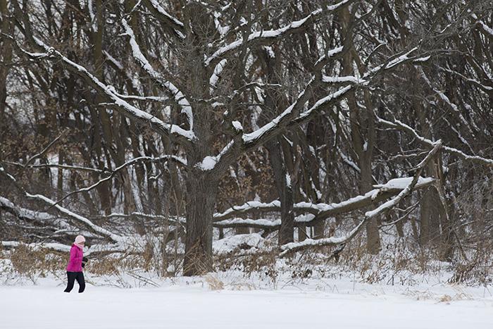 Snow jogger