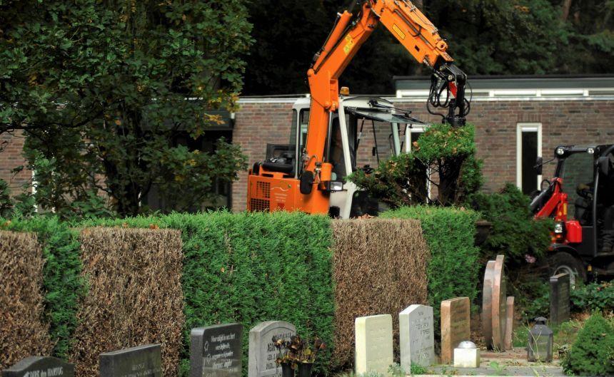 Op begraafplaats Harten 250 meter Thuja en Taxus door droogte verwijderd
