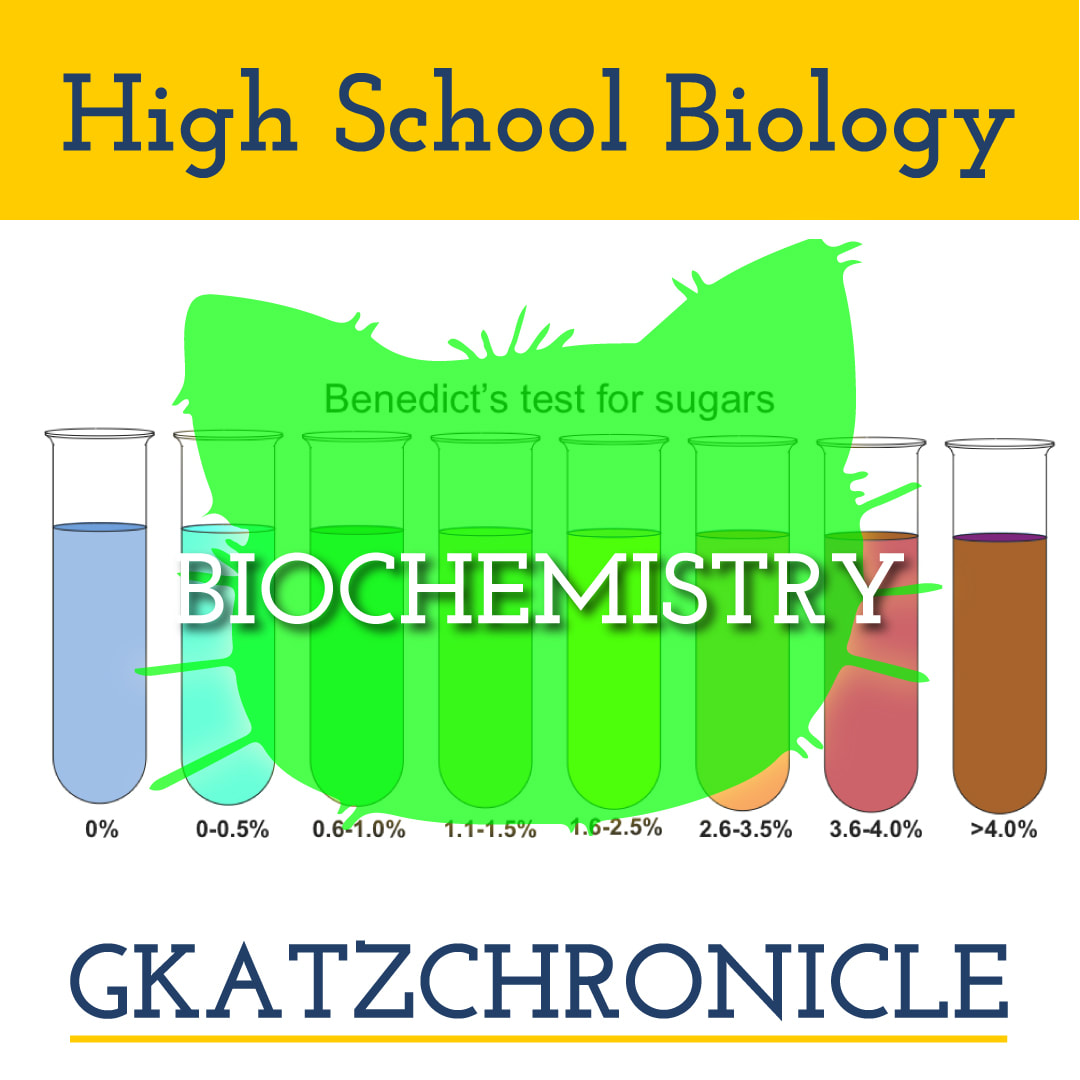 Write About Organic Molecules