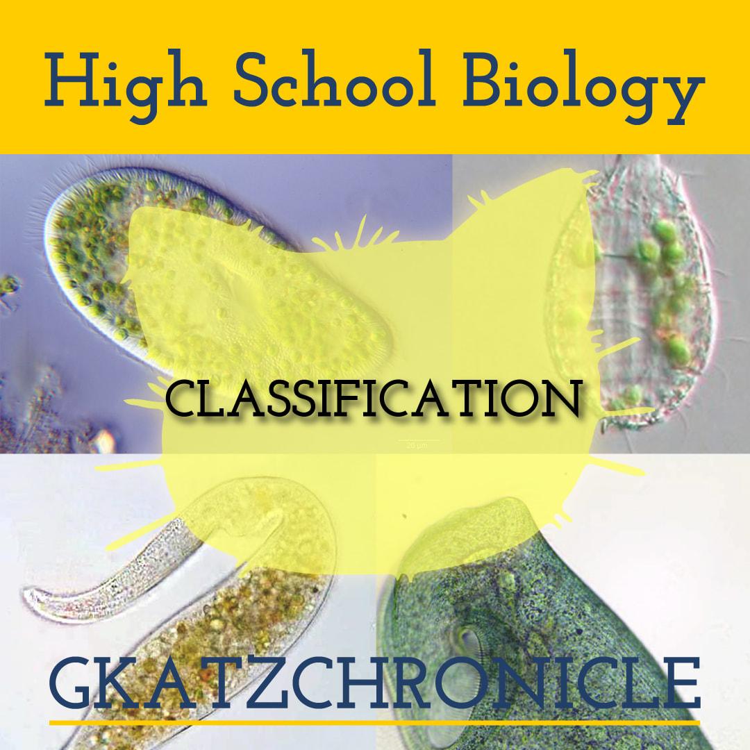 Classifying Unicellular Organisms