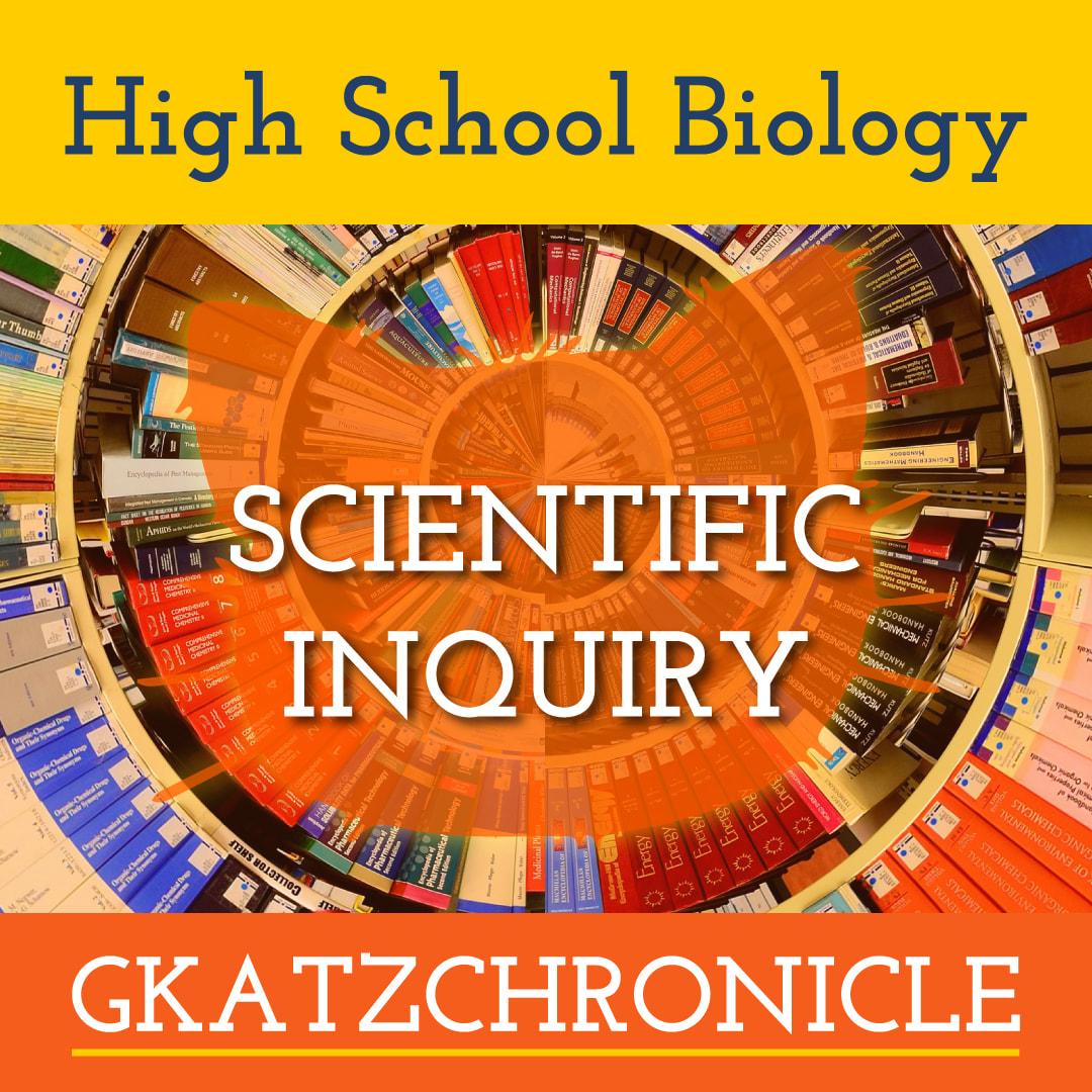 Scientific Language And Terms Worksheet