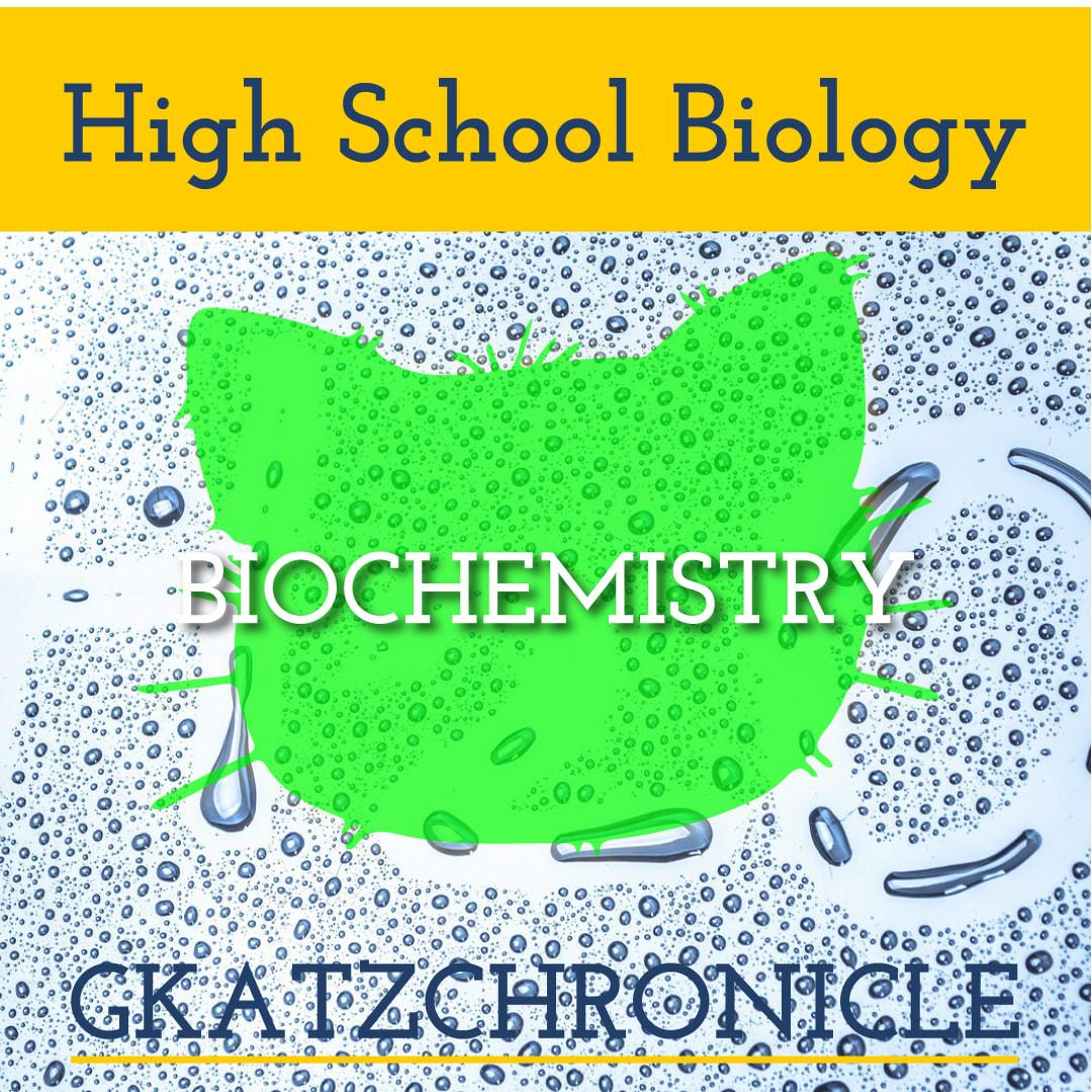 Biochem Review Dragonfly Text Worksheet