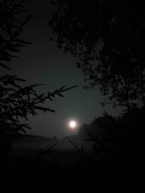 Etnokultūrinė kaimo sodyba Gervių giesmė. Naktis.