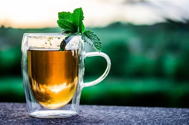 benefits of mint tea