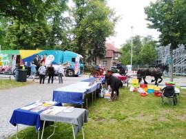 Gesamtschule KW_Schlossfest KW_2017_6