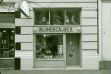 Blumenzauber - Sabine Cengiz-Klir: 1050 Wien