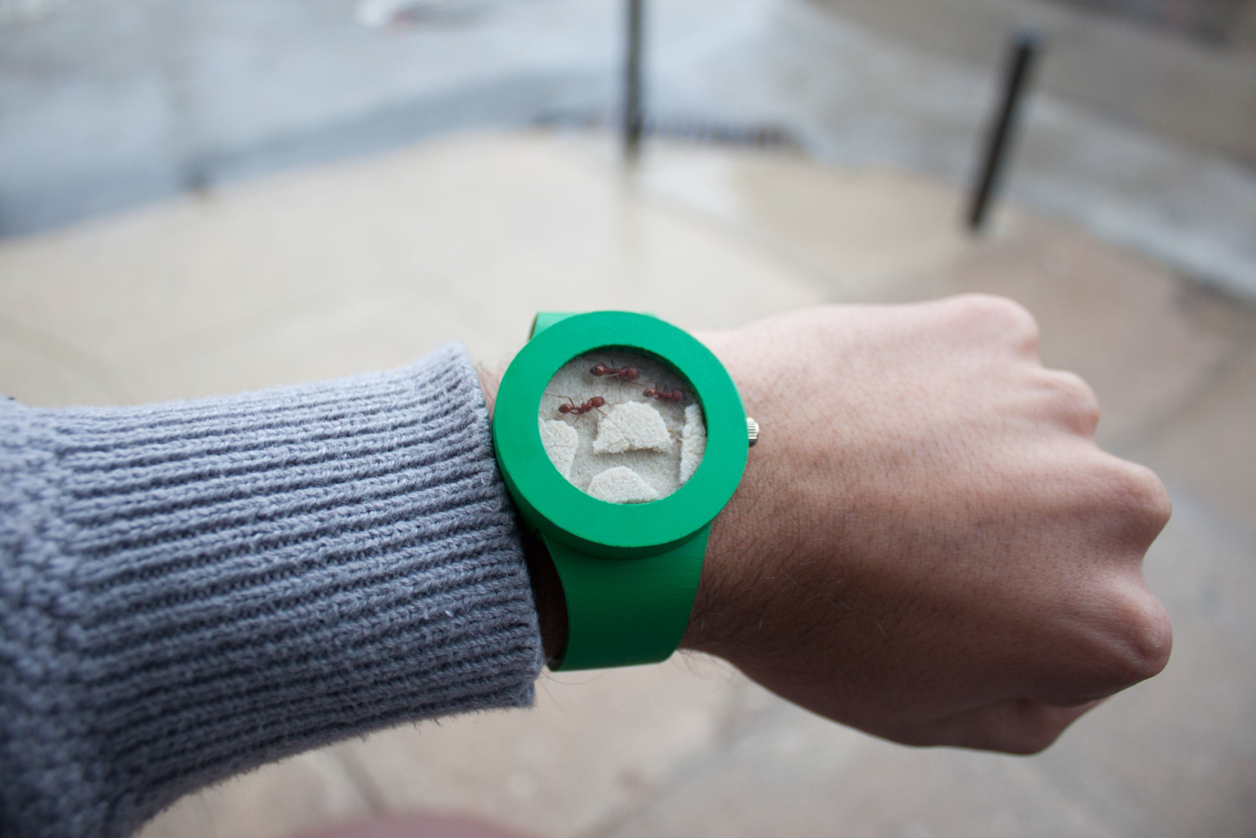 The First Ever Living Watch Is A Wearable Ant Farm