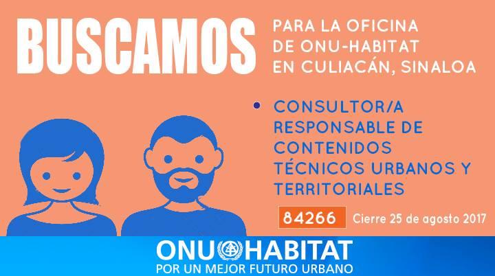 onu-habitat-mexico-busca-consultor-responsable-de-contenidos-tecnicos-urbanos-y-territoriales-para-su-oficina-en-culiacan-sinaloa