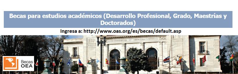 becas-para-estudios-academicos-desarrollo-profesional-grado-maestrias-y-doctorados-oea