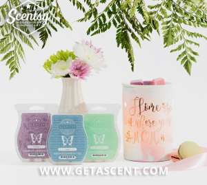 I love these gorgeous Scentsy Mother's Day bundles on getascent.com!