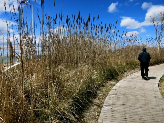 Walking Fire Island NY