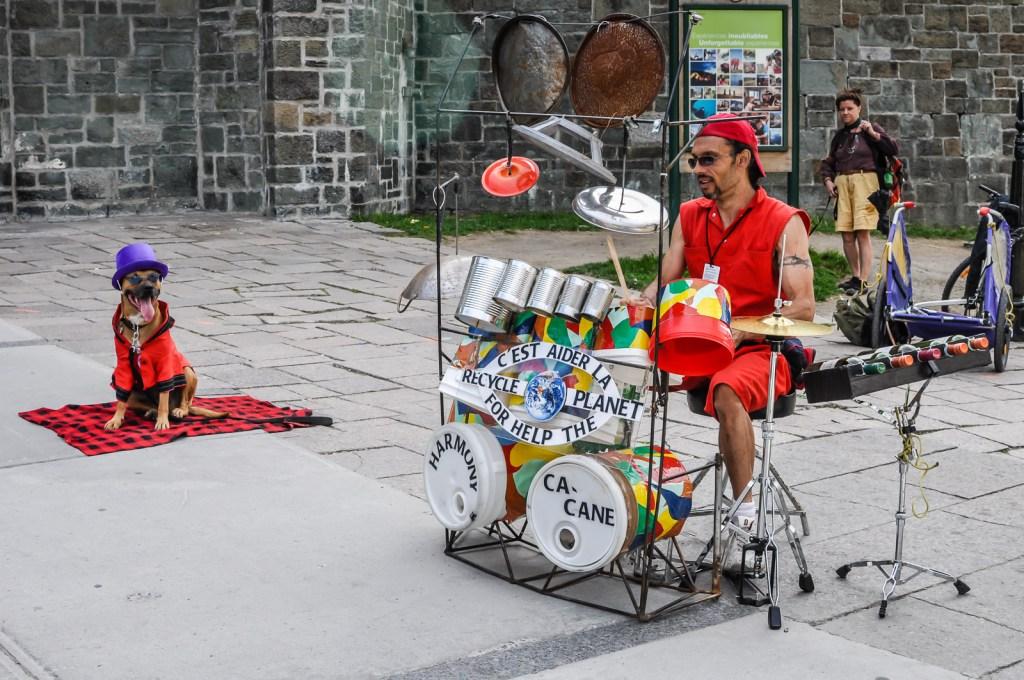 Dog and Drummer Busker - Quebec City