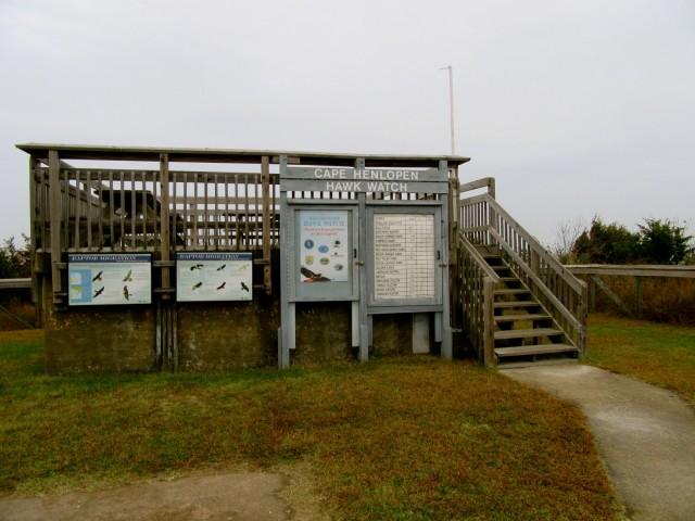 Hawk Watch Platform, Cape Henlopen SP