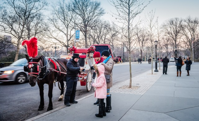 Carriage Ride Central Park NYC