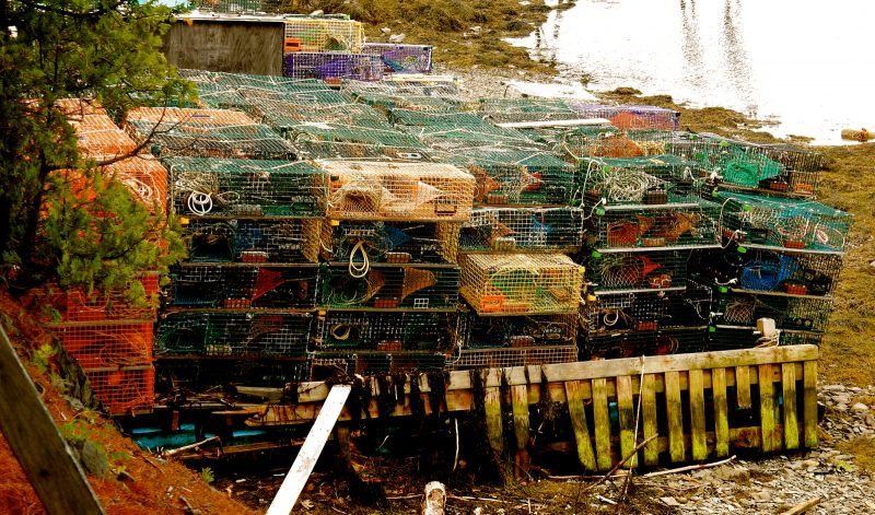 Lobster Pots, Islesboro ME