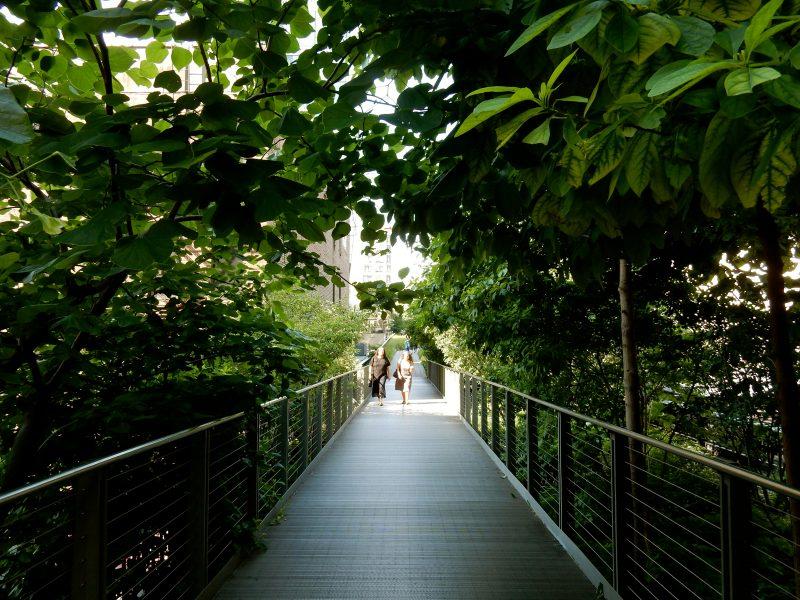 Narrow passage, Highline NYC