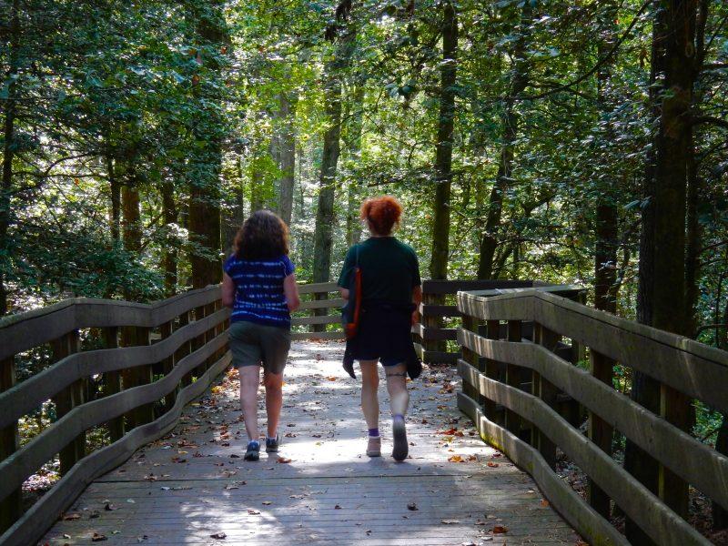 hiking-bob-trail-trap-pond-sp-laurel-de