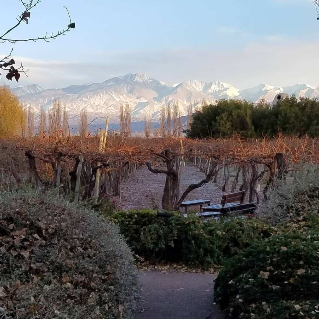 View of Andes from Cavas Wine Lodge