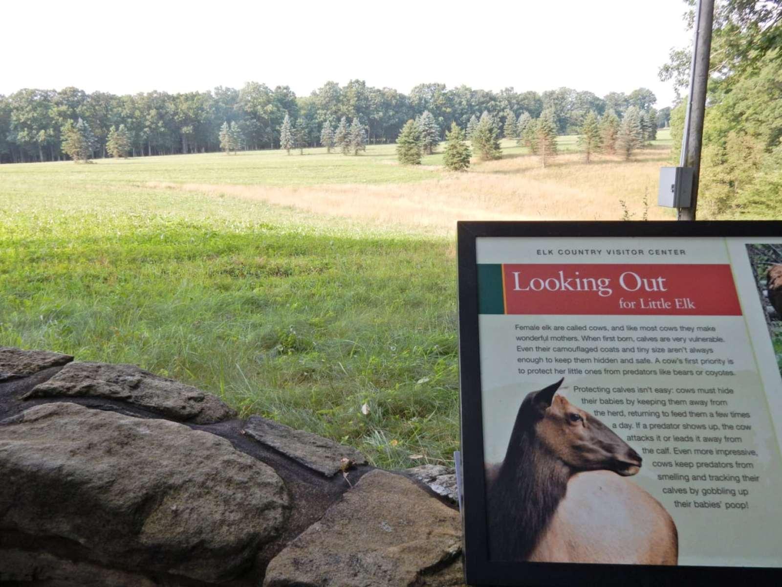 Elk Viewing Area, Elk County Visitors Center Benezette PA