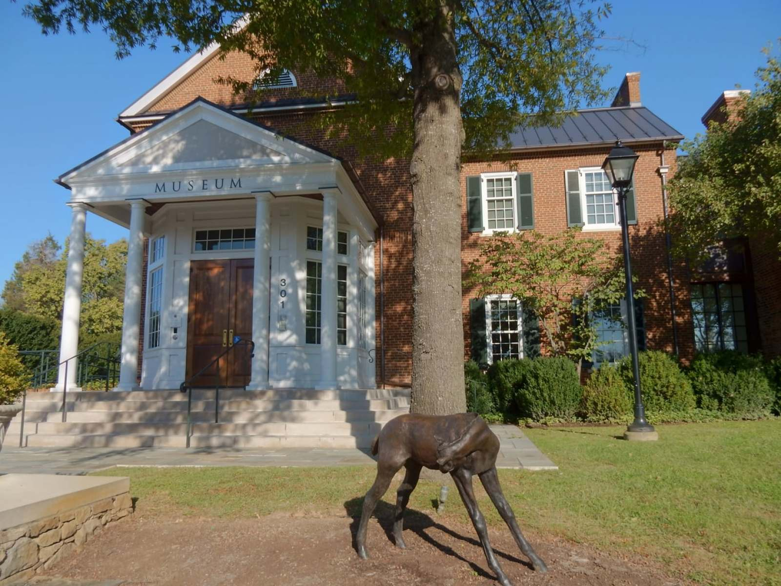 Middleburg VA: Tiny Enclave, Huge Appeal in Virginia Horse Country -