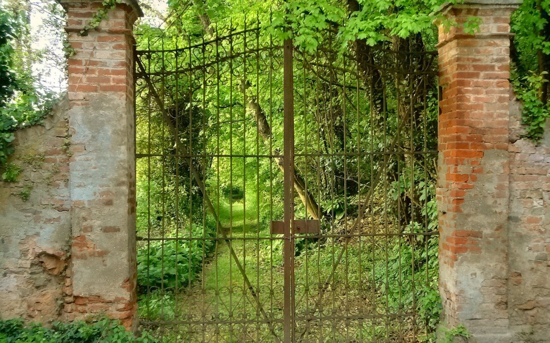 3 reasons you need a gate at your park