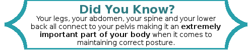Your legs, your abdomen, your spine and your lower back all connect to your pelvis making it an extremely important part of your body when it comes to maintaining correct posture.