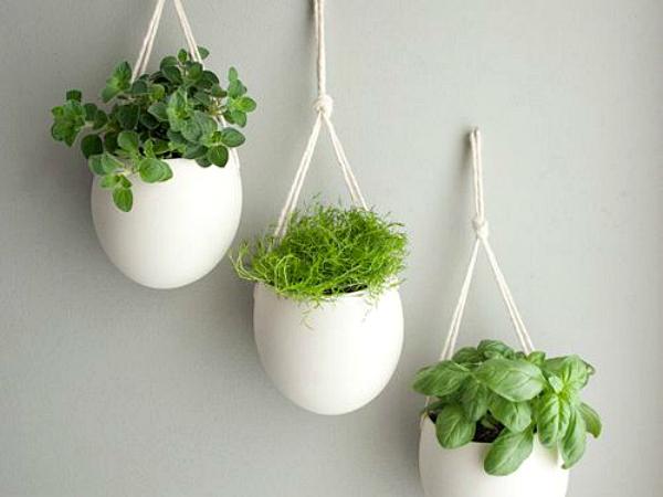 Indoor Herb Garden Ideas - Creative Juice on Hanging Plant Pots Indoor  id=78724