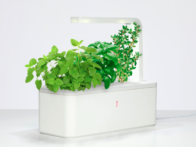 Click & Grow Smart Herb Garden – Indoor Gardening Made Easy