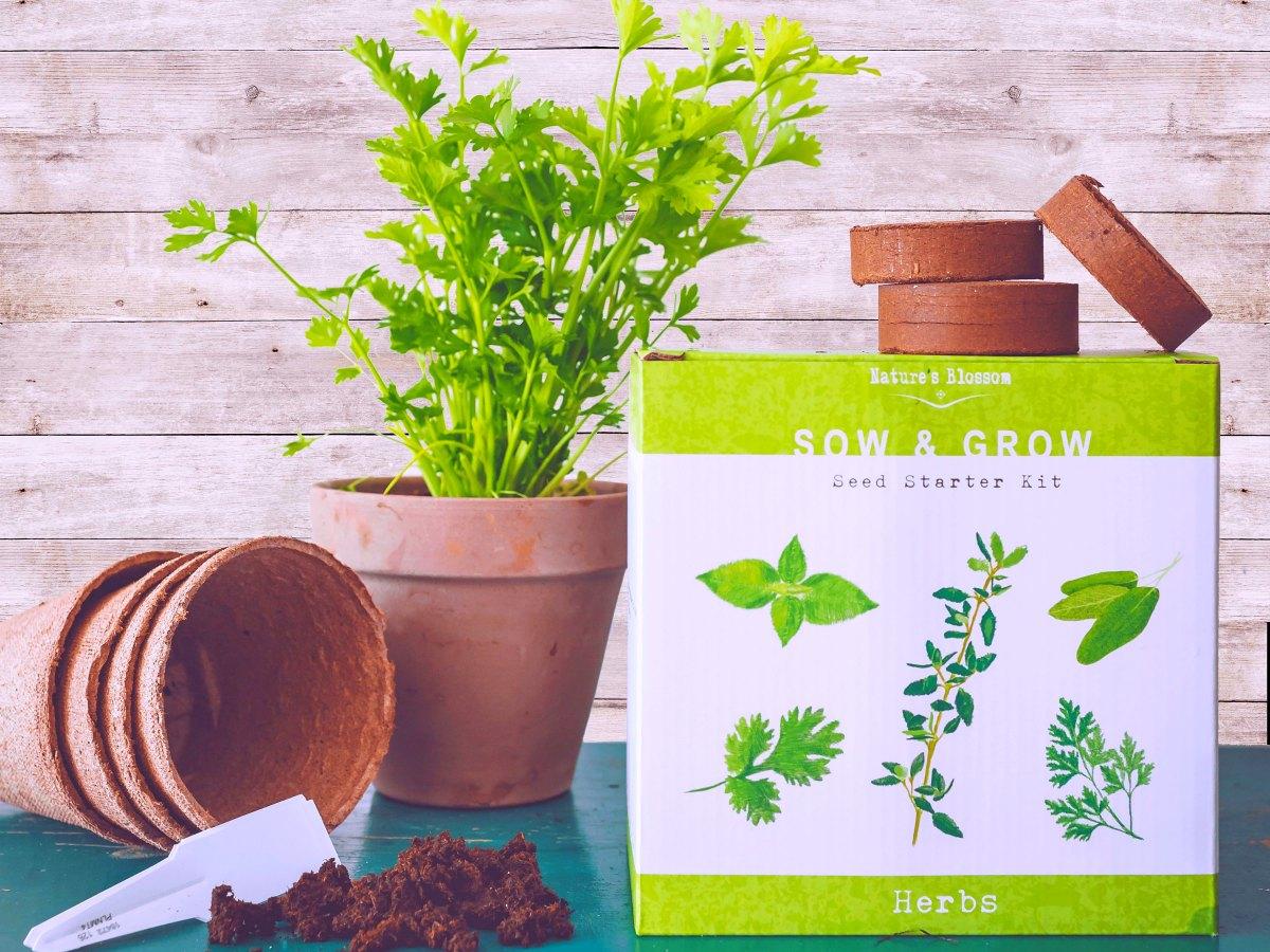 Herb Garden Seed Starter Kit