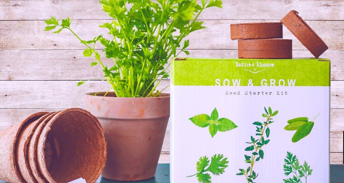 Nature's Blossom Herb Garden Seed Starter Kit
