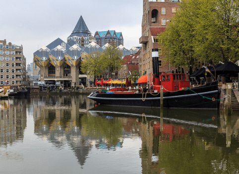 Foto Safari Rotterdam