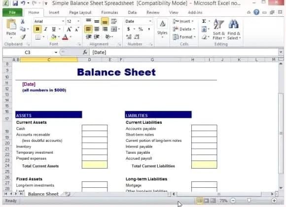 balance sheet format 333