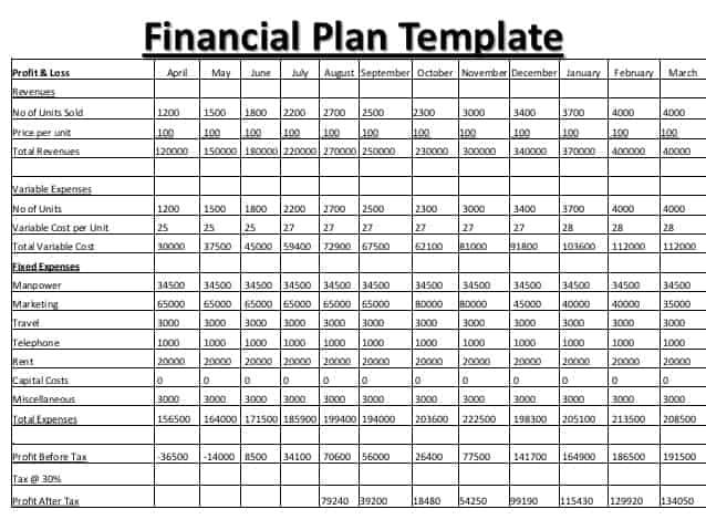 Nice Financial Plan Template 222