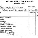 7+ Profit And Loss Account Formats In Excel