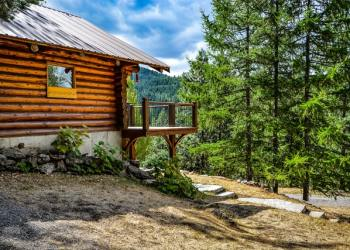 pet-friendly-cabins-North-Georgia