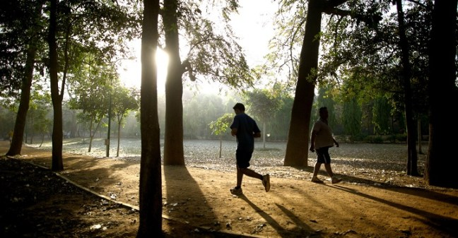 morning run: how to keep running