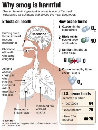 protect yourself from the toxic smog