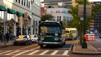 New York Transit Museum's 25th Annual Bus Festival